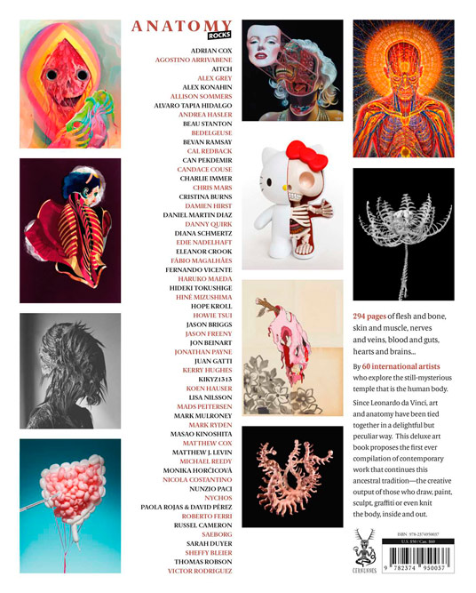 art books featuring thomas robson,  Anatomy Rocks, rear cover image 6